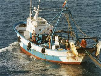 Piratería y guaterismo, principales problemas del sector pesquero estatal