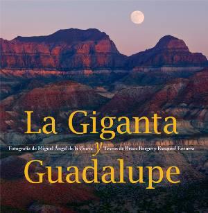 """En busca de acción y conciencia, presentan  """"La Giganta y Guadalupe"""""""