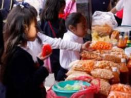 """Se iniciaron reuniones con expendedores de alimentos al aire libre, buscando controlar, sobre todo, """"las áreas de los Jardines de Niños, escuelas primarias ,"""
