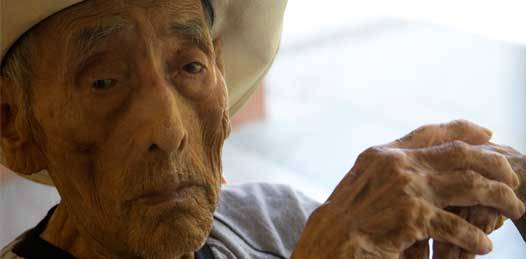 """Con el Día del Anciano, inicia el programa """"Paso a paso"""""""