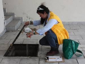 Por cada diez personas que la secretaría utilice en las calles como parte de la campaña contra el dengue, el Ayuntamiento de La Paz pondrá otras diez personas.