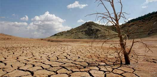 """Declara la SAGARPA """"desastre natural perturbador"""" a la sequía en La Paz, Loreto y Comondú"""