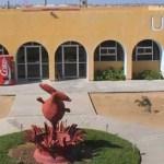 """Ahora el Frente Único de Defensa de la Autonomía de la UABCS (FUNDAUABCS) espera solamente a que sea publicada de manera oficial la resolución del tribunal, para fijar """"de qué manera la Universidad va a entrar en el cauce legal""""."""