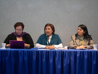 Integrarán en el PED programa para erradicar la violencia hacia la mujer