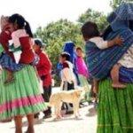 """La alerta sobre la considerada """"inminente"""" epidemia fue puesta en tribuna del Congreso del estado por la diputada del PRI Gloria Guadalupe Rodríguez, quien reveló que en el albergue infantil del poblado de Creel, en el municipio de Bocoyna, en la Sierra Tarahumara, cinco niños se encuentran en cuarentena por estar infectados del virus."""