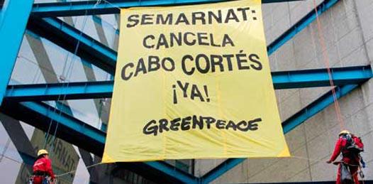 Proteger El Mogote y Cabo Pulmo, logros ambientalistas en 2012
