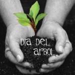 """En México el """"Día del Árbol"""", se celebra el segundo jueves del mes de julio, instituido por el presidente Adolfo López Mateos en 1959."""
