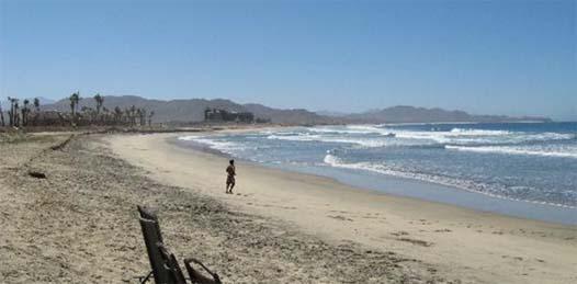 Tienen  Paraíso del Mar, Gran Baja y hoteles de Los Cerritos,  millonarios adeudos con Zofemat