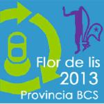 Scouts BCS