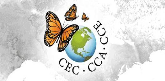 Ante organización internacional, denuncian ambientalistas a SEMARNAT