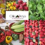 Feria del Chile y la Fresa