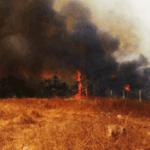 Incendio en la Caribe