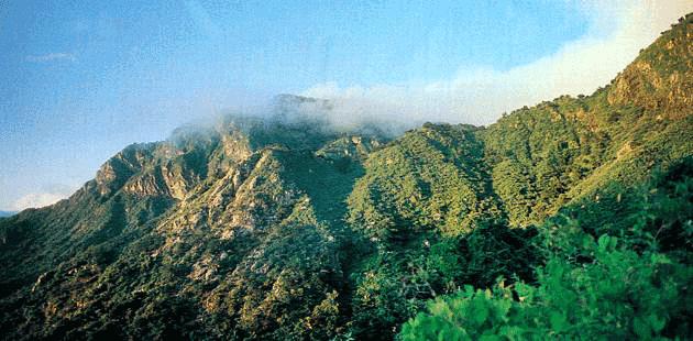 La Sierra de la Laguna, ejemplo de conservación