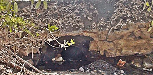 Amenazan obras de pavimentación al Estero Palmira