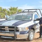 Licitacion de patrullas