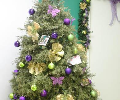 Abren tres centros de acopio para árboles de navidad