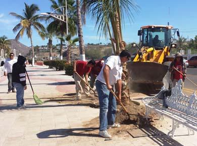 Reforesta Servicios Públicos Municipales el malecón