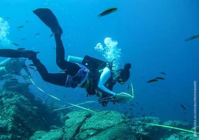 Benéfico declarar Área Natural Protegida a la Isla Espíritu Santo