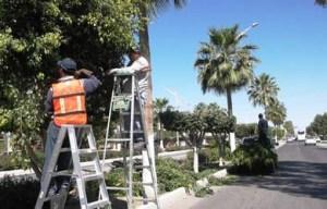 Cuadrillas trabajan en limpieza del Boulevard Agustín Olachea