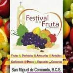 El festival de la fruta