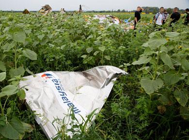 Hallan más cuerpos del avión derribado