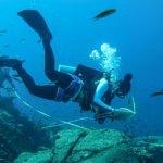 """curso """"Monitoreo submarino y análisis de la información"""","""