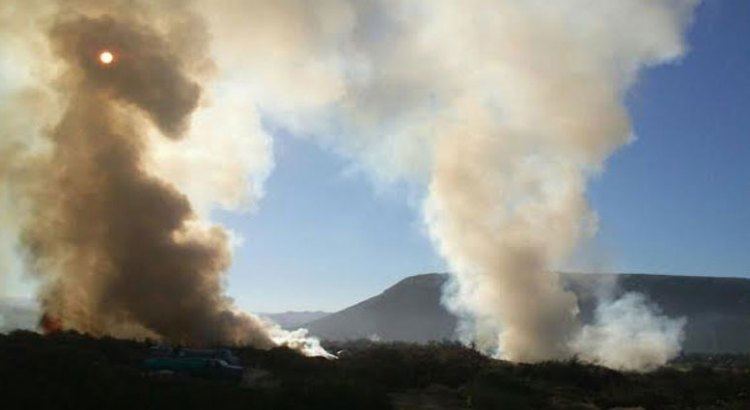 Arde acopio de basura en El Bordo