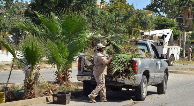 Jornada de limpieza en el fraccionamiento Hojazen