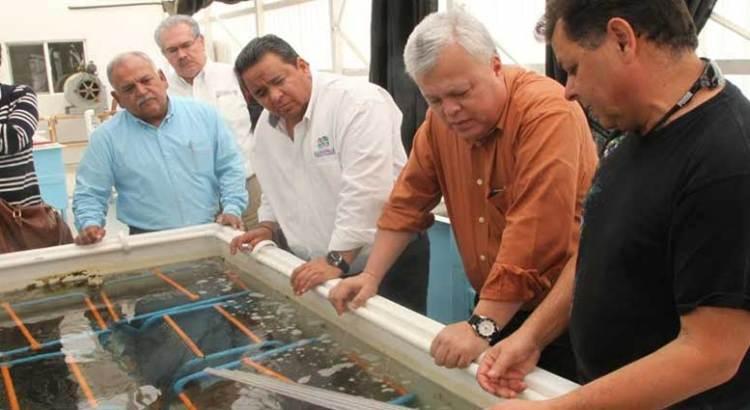 Visitó la Pacífico Norte el Comisionado Nacional de Pesca