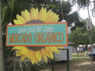 Llegó a los XV el Mercado Orgánico