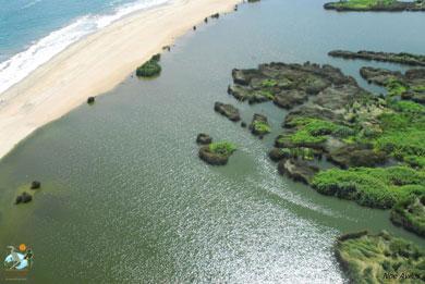 Promoverá Gobierno de Los Cabos campaña turística #Cabosvive
