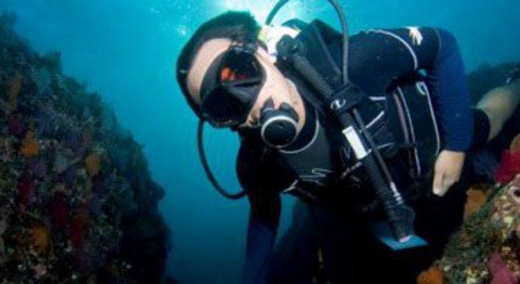 Islas Marías, un mundo submarino por descubrir