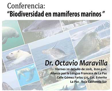 """Biodiversidad en mamíferos marinos"""