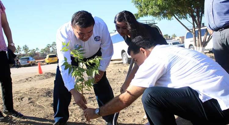 Se suma UABCS a campaña de reforestación