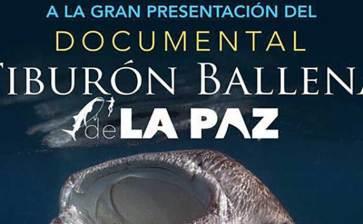 """Invitan a la proyección de """"Tiburón Ballena de La Paz"""""""