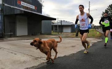 Por error entró al medio maratón