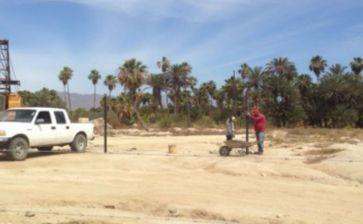 Comenzó la deforestación de palmares del Estero de San José