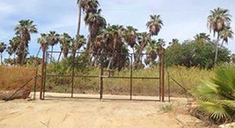 Construirán un Hotel Caesars Palace en el Estero San José
