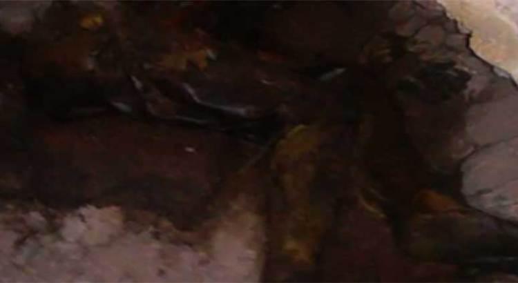Encuentran cadáver en una cueva