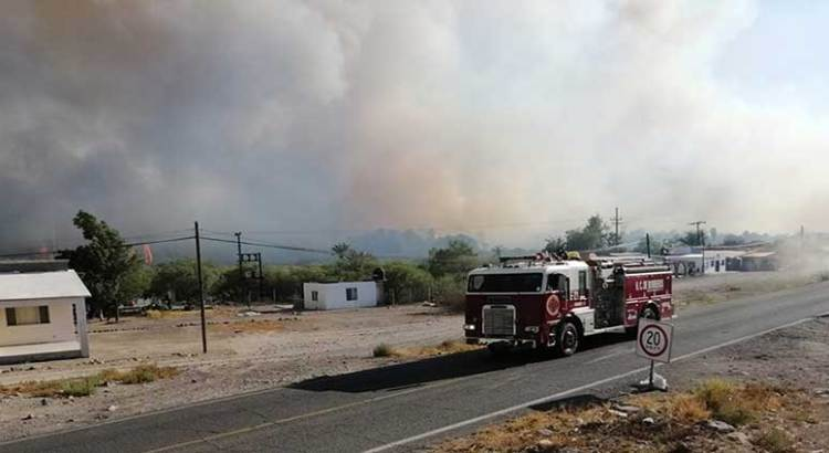 Arrasa el fuego los palmares de San Ignacio