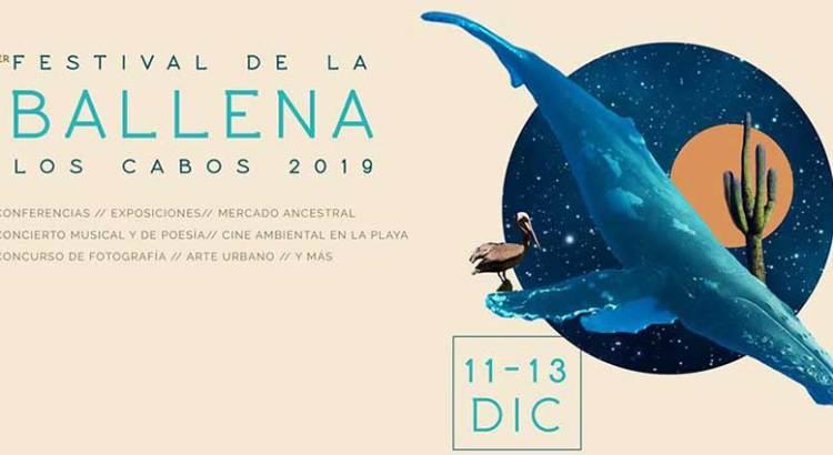 Ya viene el Primer Festival Ballena Los Cabos