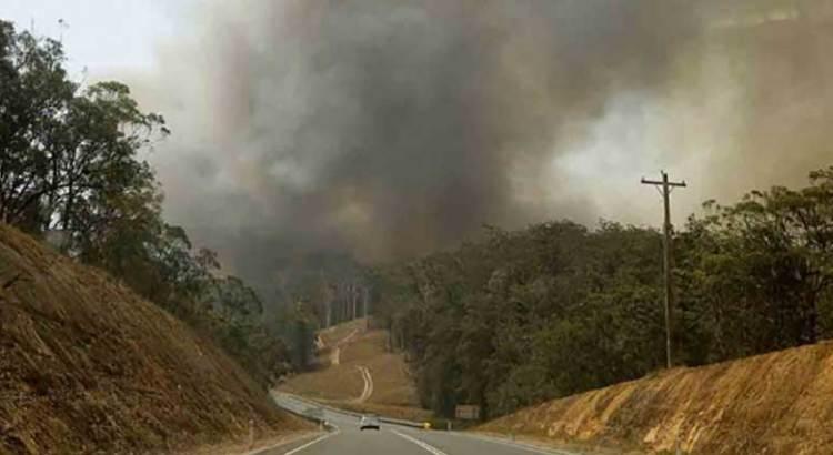 Por fin fueron controlados los incendios en Australia