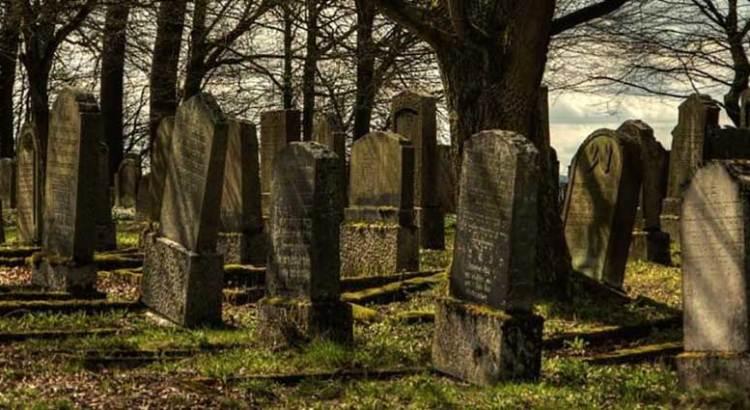 Lo encontraron vagando por el cementerio