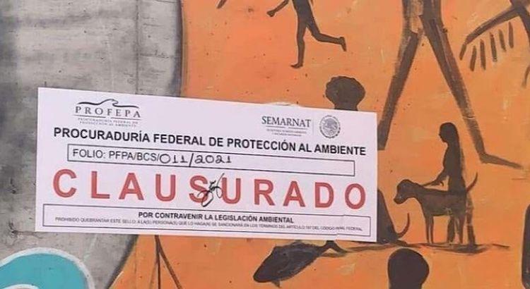 Coloca PROFEPA sellos de clausura en el Muro de Costa Azul