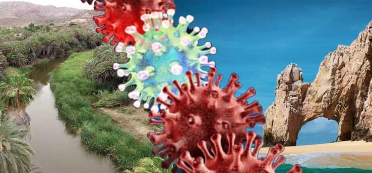 Alerta la OPS por alza de contagios covid en BCS