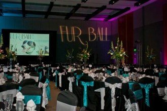 The 2014 Fur Ball