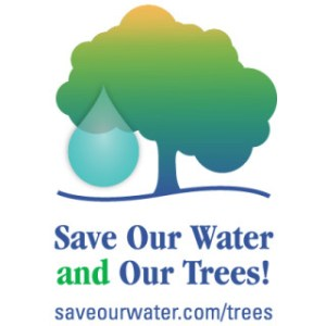 Save Water save Trees