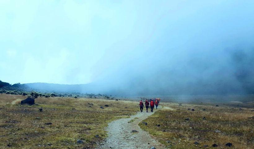 Alun-alun Suryakencana, Taman Nasional Gunung Gede - Pangrango