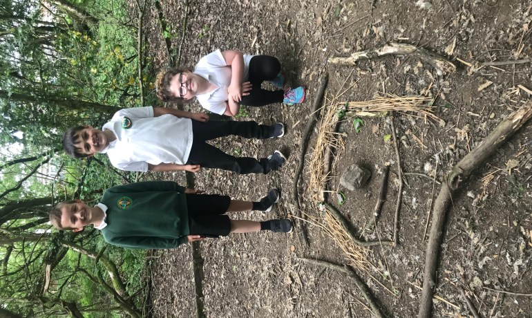 Creating and enjoying down the woods.
