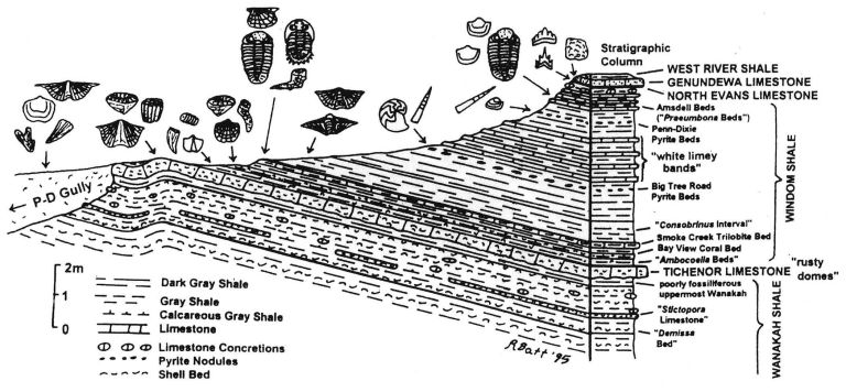 stratigraphy_lowres